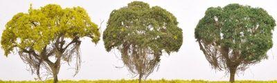 Banyan Jungle Trees