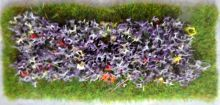 Formal Flower Bed (Rectangular)