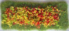 Formal Flower Bed (Rectangular)