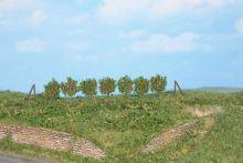 Heki 19135 - Espalier Trees 2.5cm (60)