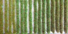 Grass Strips - 1-2mm Long