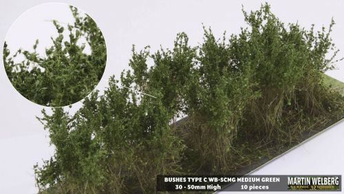 Shrubs - Type C - Click For Options