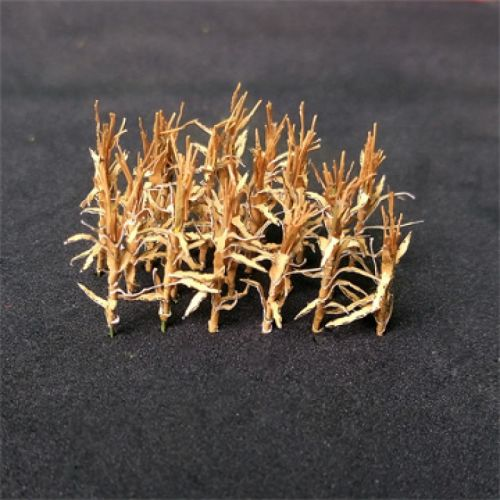 Dry Corn Stalks - N Gauge
