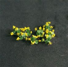 Marsh Marigolds - N Gauge