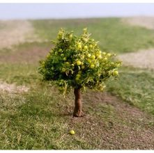 Pear Trees - N Gauge