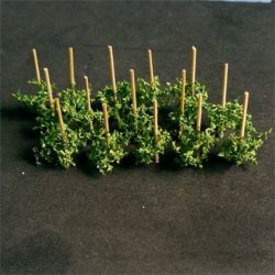 Runner Beans - N Gauge - 00911 - BACKORDER