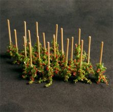 Tomato Plants - N Gauge - 00912