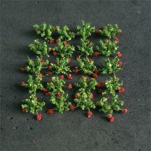 Strawberry Plants - N Gauge