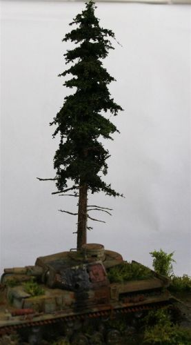 Douglas Fir Tree - Premium