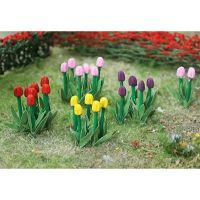 Tulips - OO/HO Scale - 00675