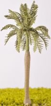 Royal Palm Tree - (Click picture for options)