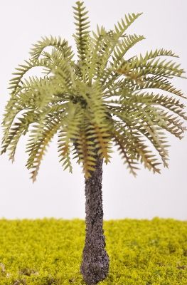 Date Palm Tree - (Click picture to see prices and options)