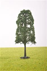PL21104 - 100mm Tall Lime Tree