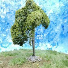 PL1002 - 105mm Tall Deciduous Tree