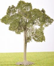 PL1002 - 105mm Tall Deciduous Tree