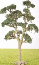 PL1029 - 105mm Tall Deciduous Tree