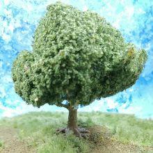 PL1050 - 100mm Walnut/ Oak Tree- Dark Trunk