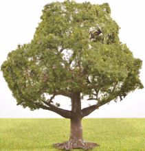 PL1050 - 100mm Walnut/ Oak Tree- Dark Trunk