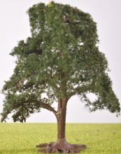 PL1068 - 100mm Tall Deciduous Tree