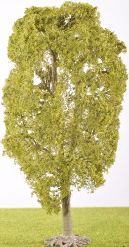 PL1079 - 200mm Deciduous Tree (C15)