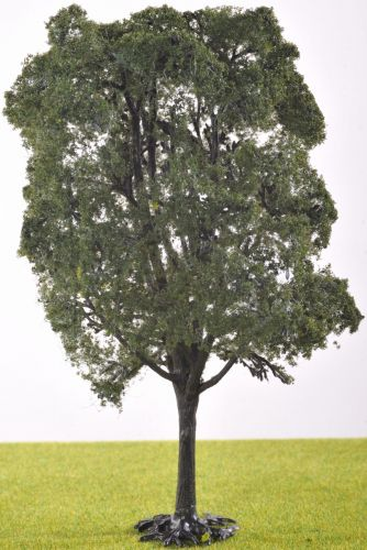 PL1080 - 200mm Deciduous Tree (C11)