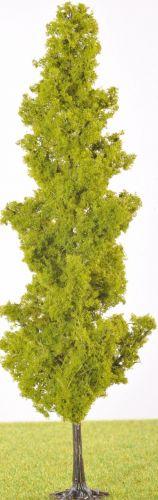PL21101 - 180mm Tall Poplar Type Tree