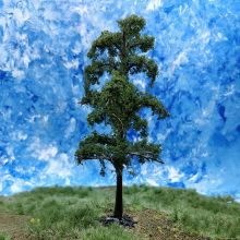 PL21104 - 100mm Tall Lime Tree