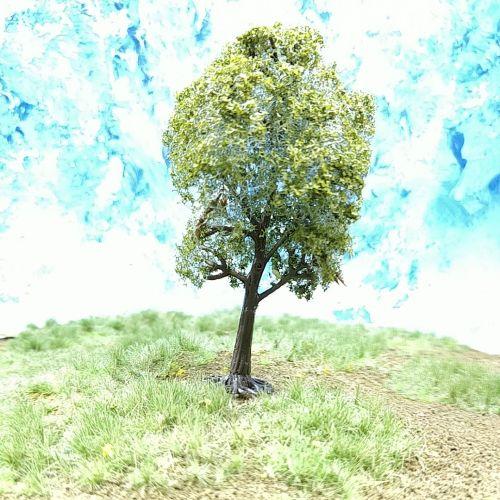 PL23101 - 80mm Dark Green Deciduous Tree
