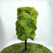 PL26102 - 180mm Elm Tree