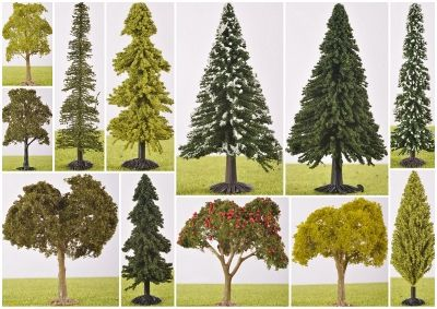70/80mm Tall Trees