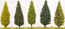 Poplar Trees - (Click picture for options)