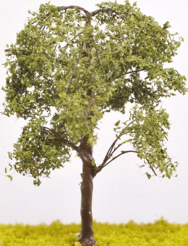 Elm Tree - (Click picture to see prices and options)