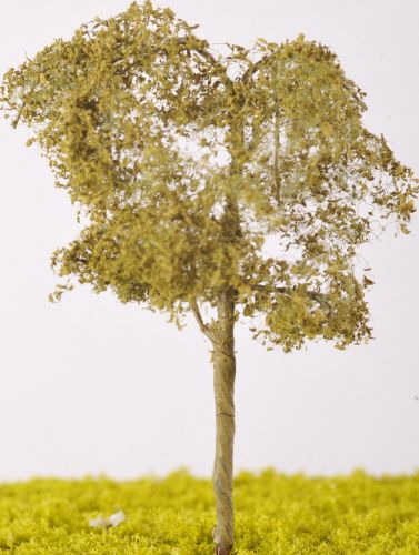 Aspen Tree - (Click picture to see prices and options)