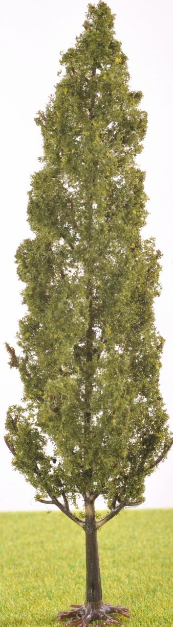 Pl1100 180mm Tall Poplar Type Tree The Model Tree Shop