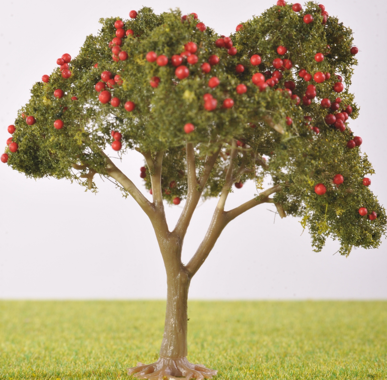 pl  mm fruit tree  with fruit  the model tree shop, Beautiful flower